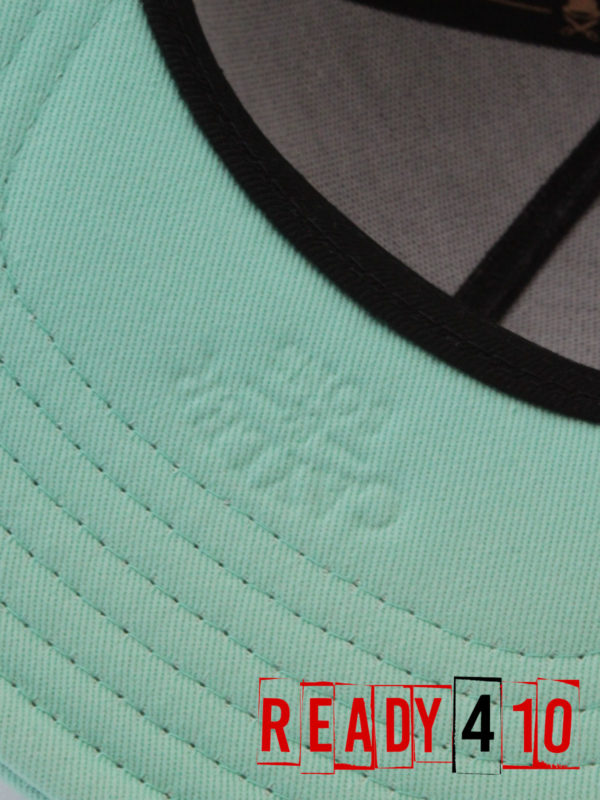 CAYLER & SONS CL Alelo Cap - black/mint - Detail Visor
